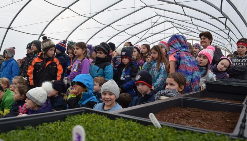 Memramcook: un jardin communautaire intergénérationnel [vidéo]