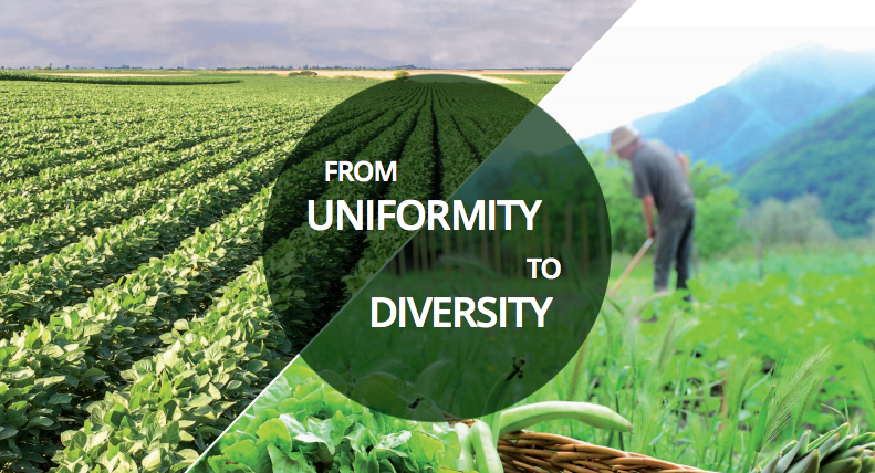 FROM UNIFORMITY TO DIVERSITY: A paradigm shift from industrial agriculture to diversified agroecological systems