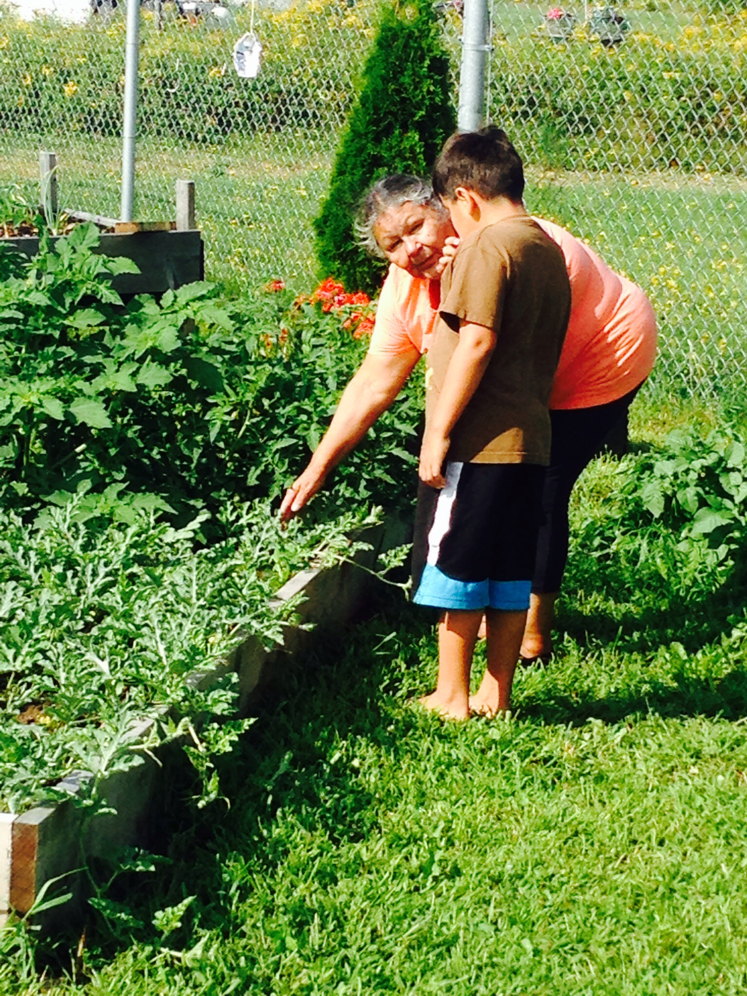 Elsipogtog garden coordinator and a summer visitor. The Elsipogtog School, NB.