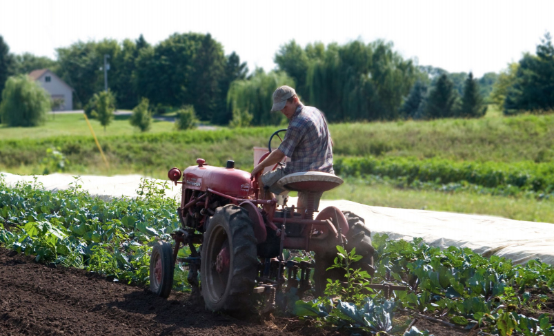 Economic Impacts of Farm to School: Case Studies and Assessment Tools