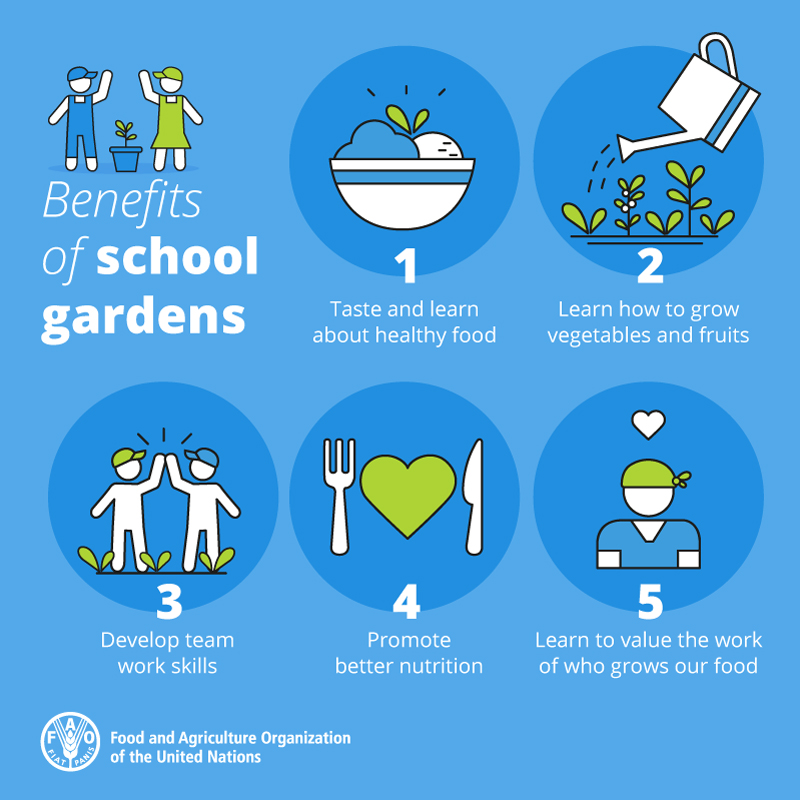 5 Benefits of School Gardens