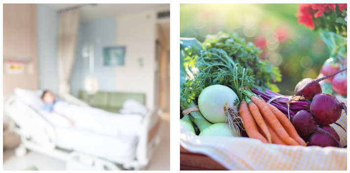 Local Farms Branching into Local Health Care System in NL: Pilot Project Underway