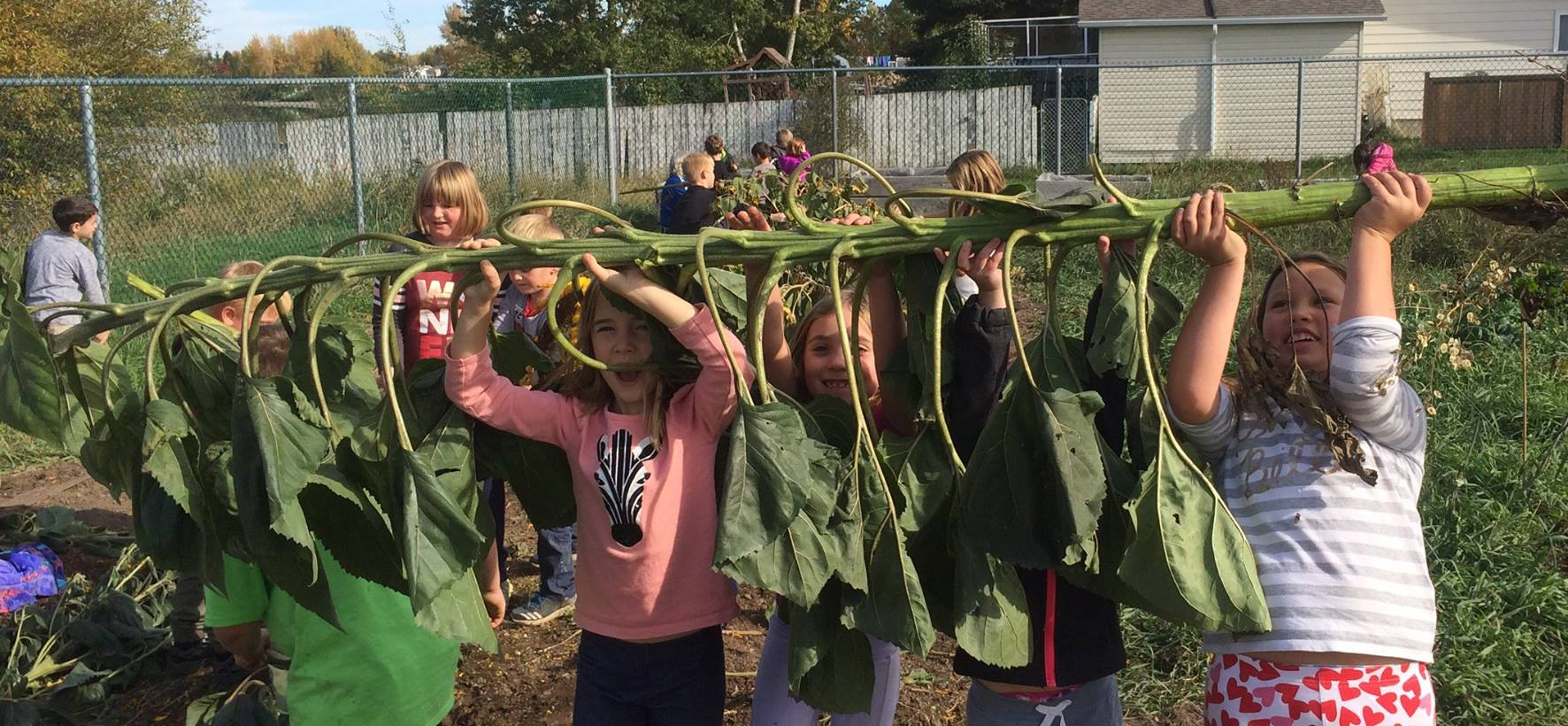 Media Release: Government, Grocers, and Grassroots Invest in Canada's Farm to School Program