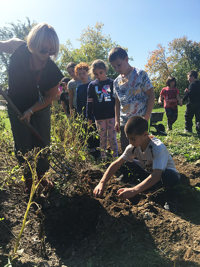 Farm to School, Farm to School Canada